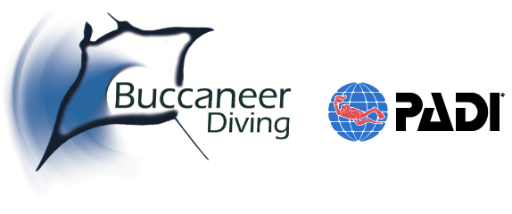 Dive Zanzibar | Buccaneer Diving | PADI 5 Star IDC Centre